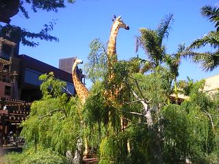 Giraffe sculptures at Lopesan Baobab #grancanariahol