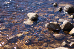 stream, water, nature, rock,