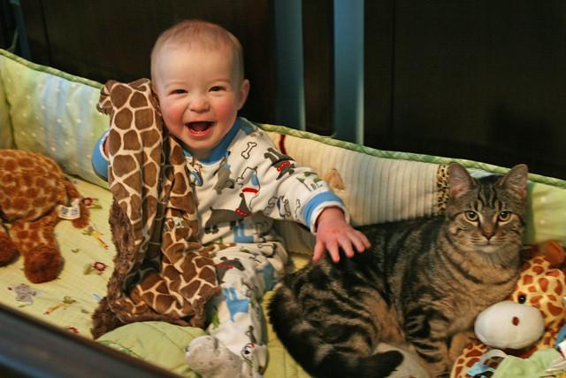 A Boy & His Kitty