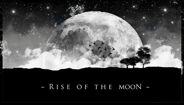 ~ rise of the moon ~