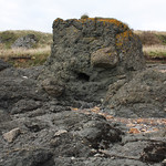 Volcanic rock called tuff, west of St Monans