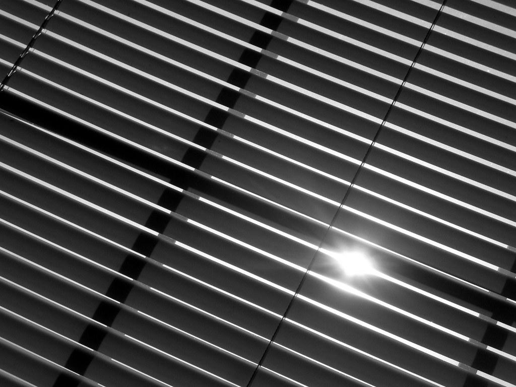 hiding from the sun