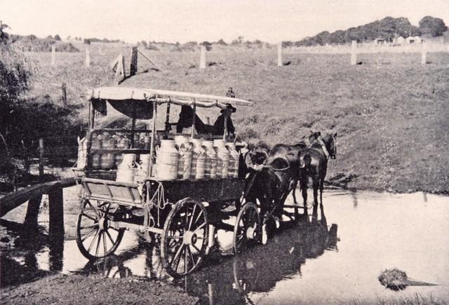 Horse-Drawn Cream Cart, Newcastle, NSW, Australia [c.1920's]