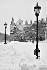 Winter Scene, University of Chicago