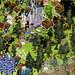 Ravenwood Fair Overgrown