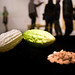 A Sensory Feast: Opening Reception