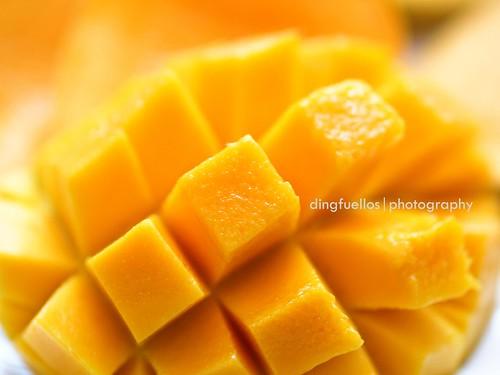 Philippine mango up close