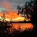wonderful summer by Per Ola Wiberg ~ powi is back