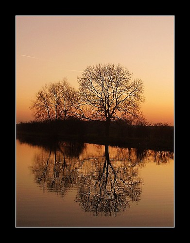 trees sunset orange water reflections evening march glow south bank canals ripples picnik doncaster yorks kirksandall