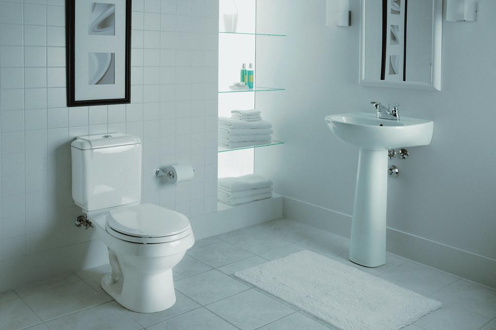 Sacramento® Pedestal Lavatory With The Rockton™ Toilet