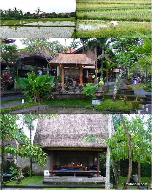 Bali Josen