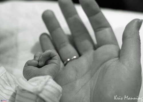 A baby's hand and a parent's hand