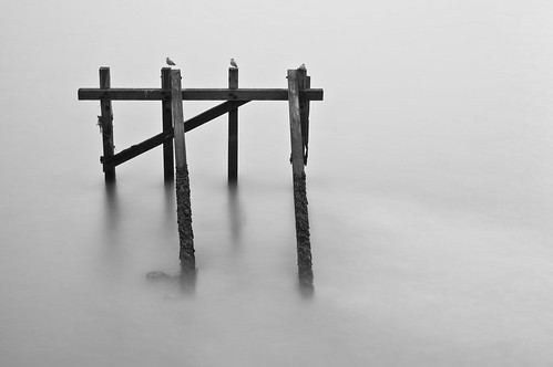 Minimalist tidal Long Exposure or just a Seagull perch by Bus_ter, on Flickr