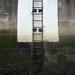 Ladder by Sarah Leo