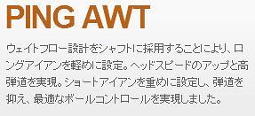PING AWT