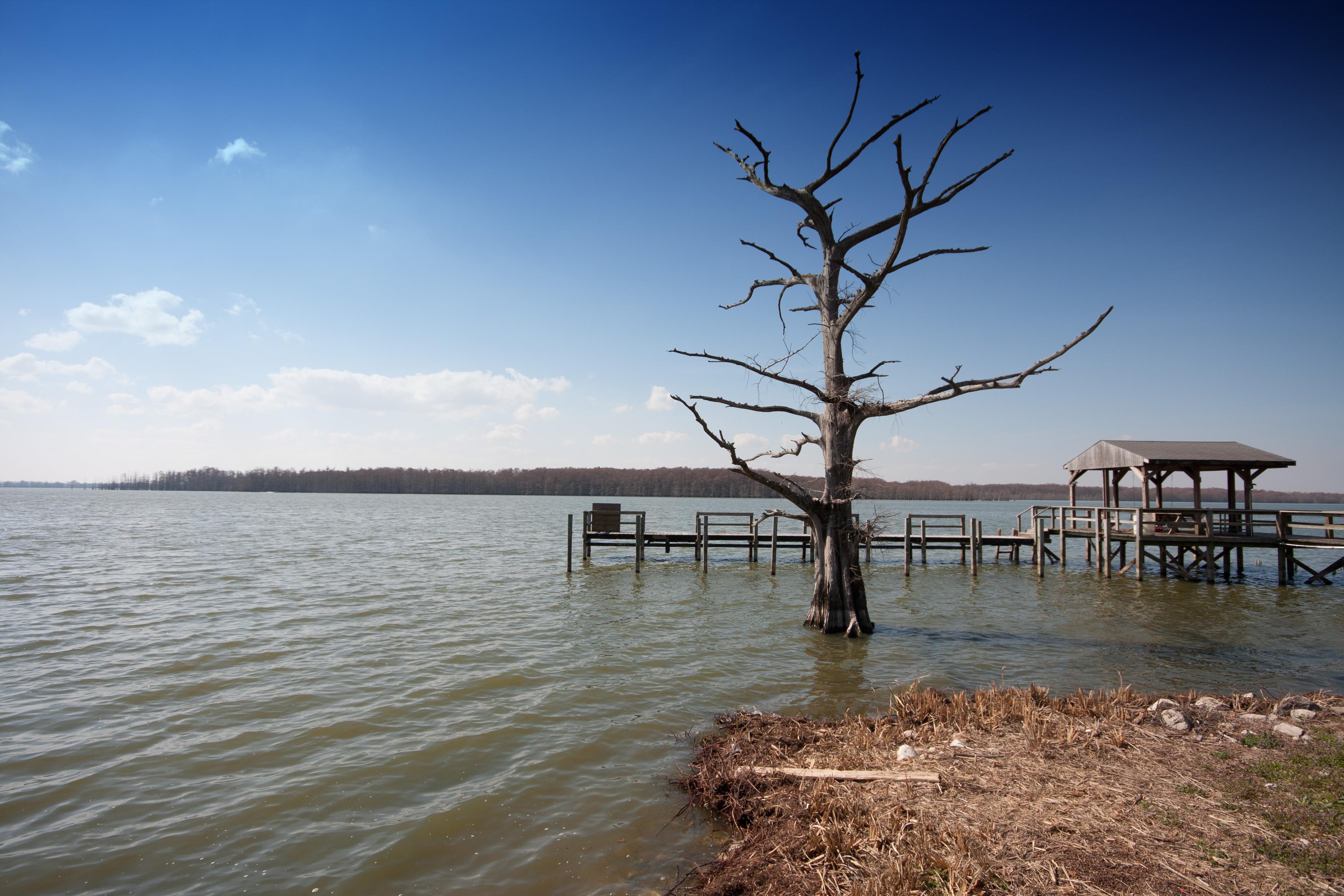 Mississippi washington county hollandale - Lake Washington Ms