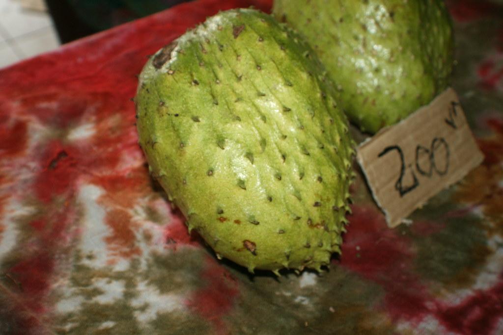 Annona muricata (Graviola; Soursop)