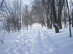 snowshoe path