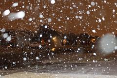 rain(0.0), snow(0.0), freezing(0.0), winter(1.0), rain and snow mixed(1.0),