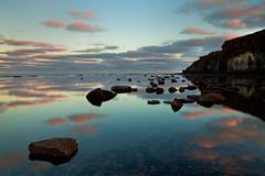 Rock Field Reflections