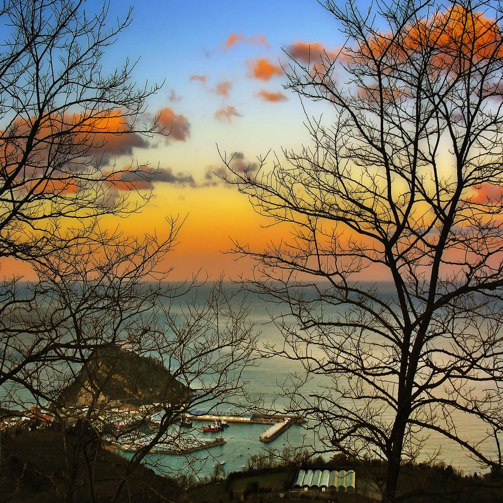 Bidegoian Spain  city pictures gallery : trees sunset sea costa clouds atardecer coast mar árboles branches ...