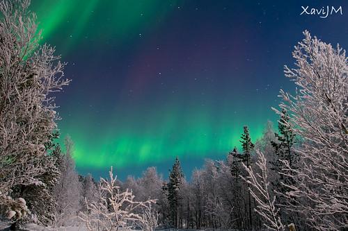 Northen light / Aurora boreal