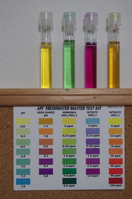 49/365 Rainbow Chemistry