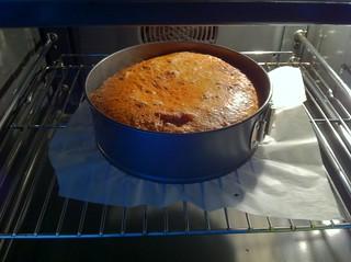 Ying-Yang Chocolate Cake 1