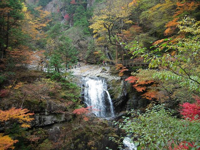 御手洗渓谷 - Mitarai ravine // 2010.11.14 - 37