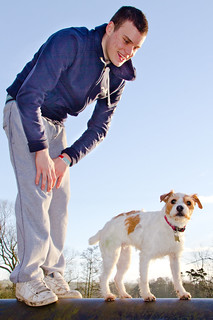 Holly the Jack Russell and son