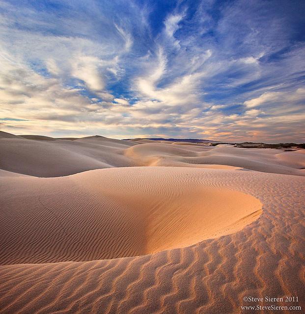 California Coastal Dunes