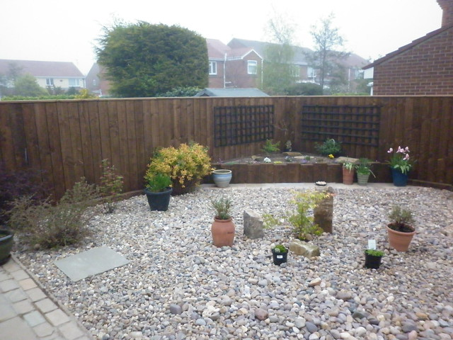 Garden today