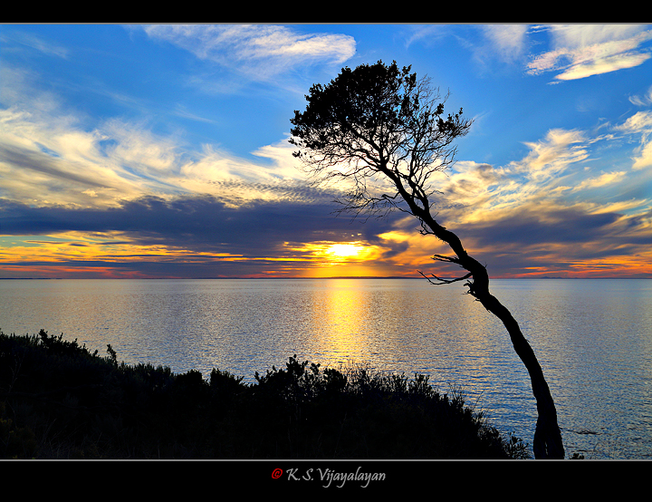 Sunset @ Mornington