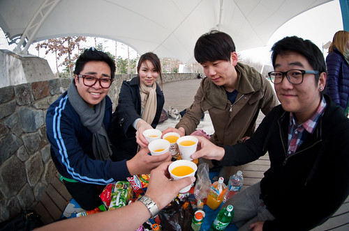 Seoul_Forest_028