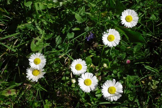Inspiring spring V