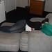she can sleep anywhere by effyeahrecalc