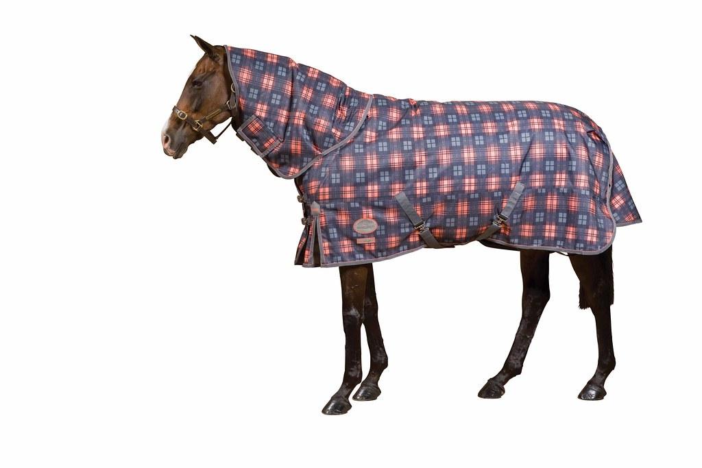 Eurohunter Horse Rugs Horse Rugs Artificial Grass Carpet
