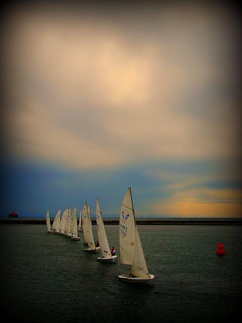 Sail Boat Race Lasalle Park in Buffalo, NY