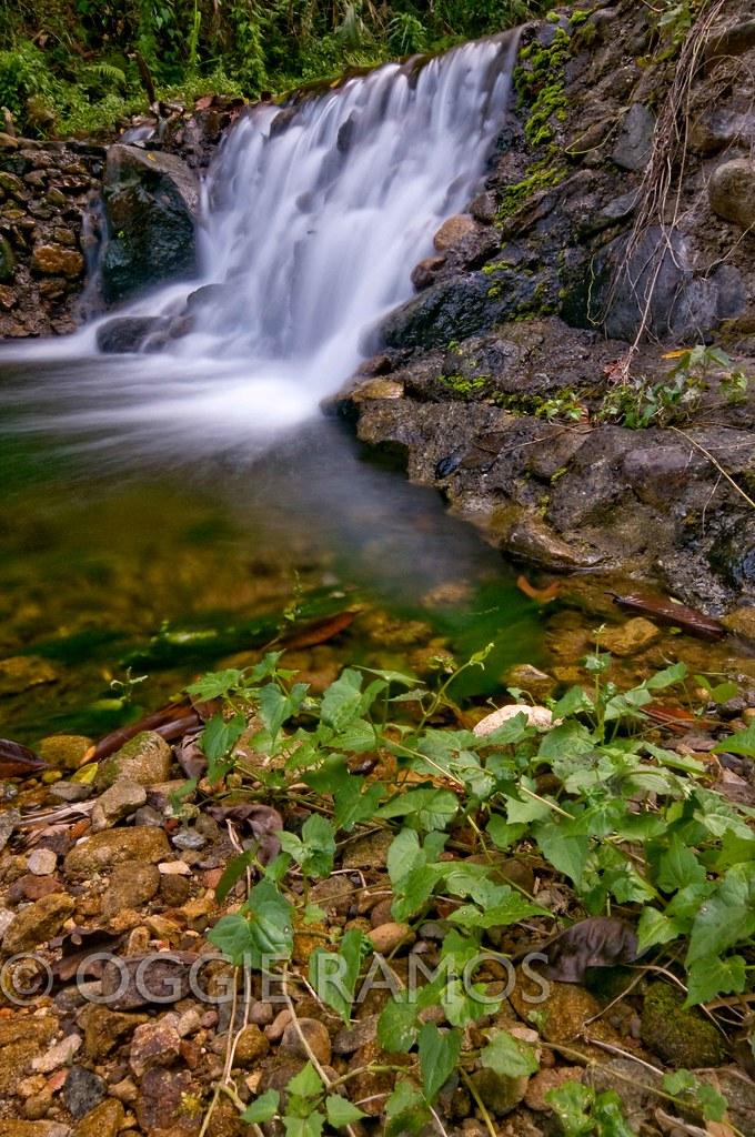 Claveria - Mabnang Falls Shrubs & Cascades