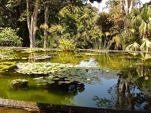 Botanico Gardens, Puerto de la Cruz