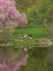 Boston Photo Peeps: Arnold Arboretum