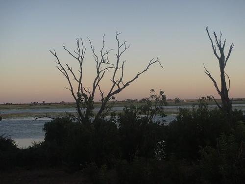 sunrise botswana chobe