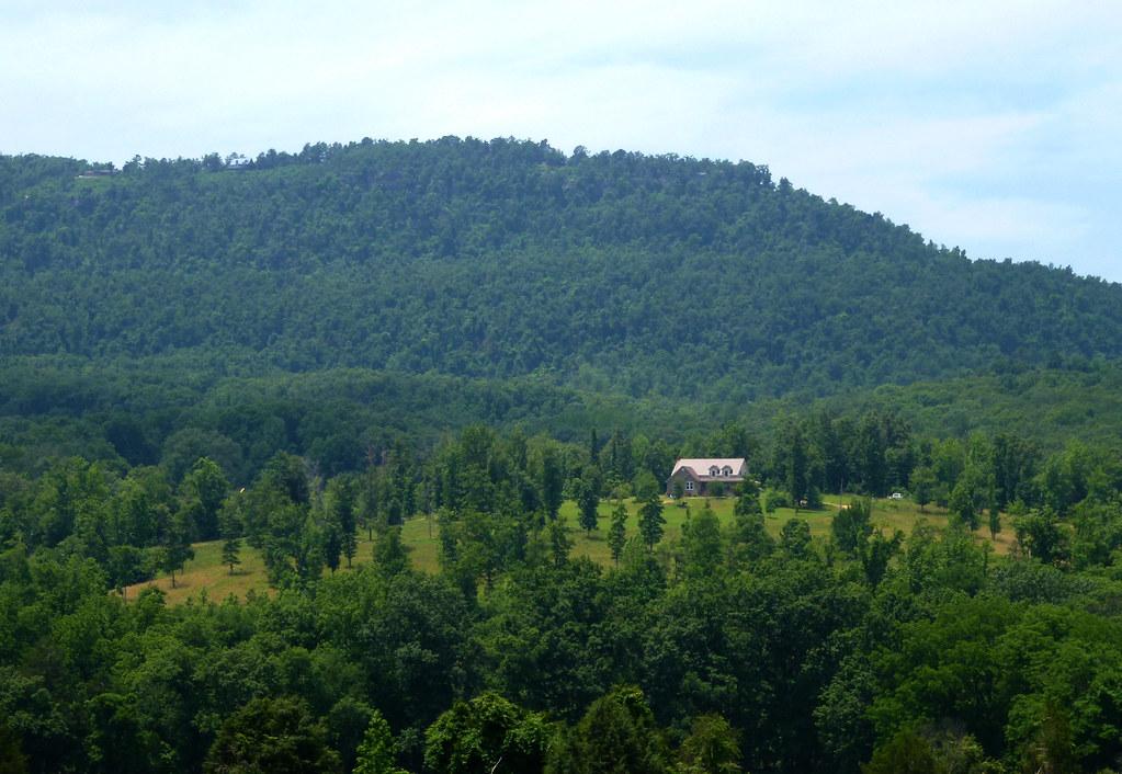Henry Koen Experimental Forest Arkansas Tripcarta