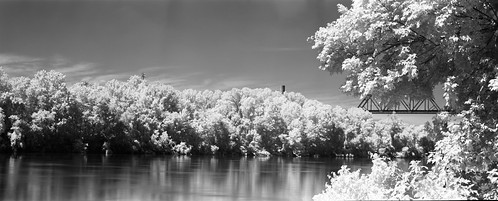 bridge trees reflection water river ir pano panoramic 3a infrared ansco r72 caffenol standdevelopment rolleiretro80s anscojunior3a