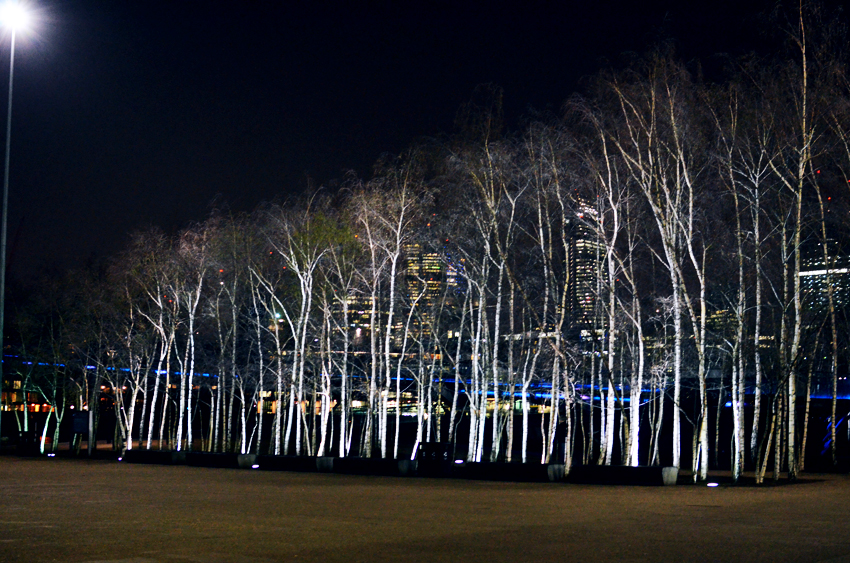 tate mod night time trees