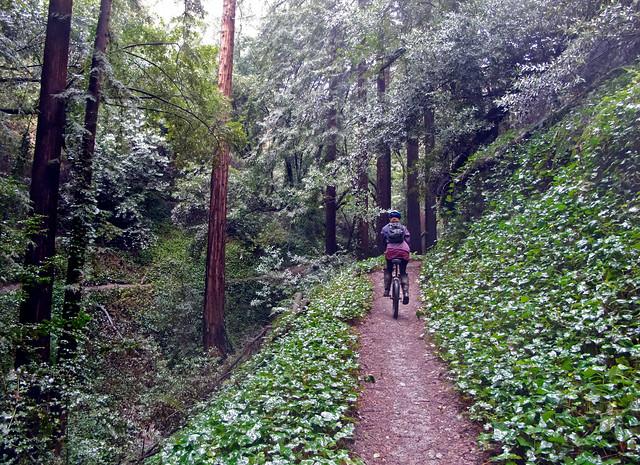 Ashley on Sinawik Trail