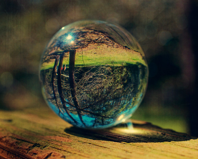 Lawn mowing? According to my crystal ball it is not happening.