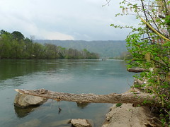 Holston River South Fork