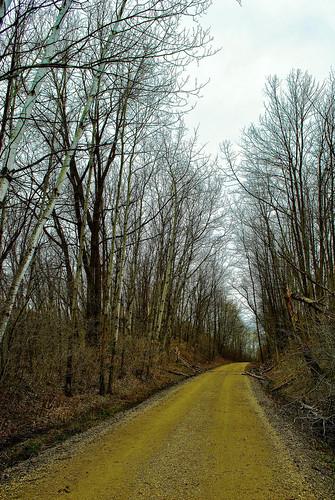Wildwood Trail, St. Croix Co., WI