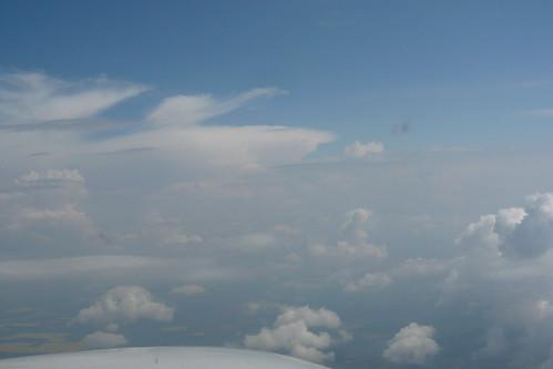 TS in the aerea Palaton